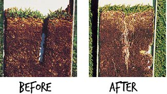 Aeration before and after